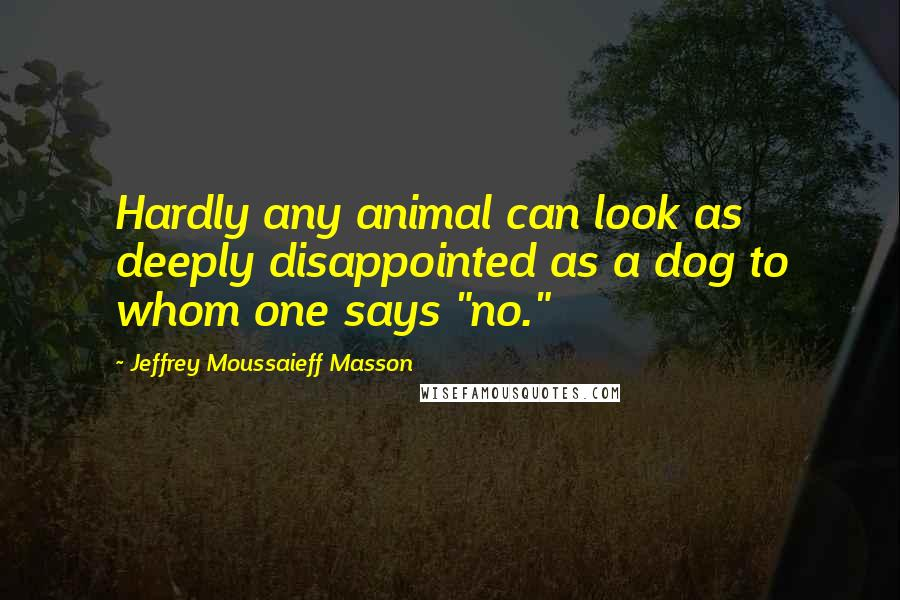 "Jeffrey Moussaieff Masson quotes: Hardly any animal can look as deeply disappointed as a dog to whom one says ""no."""