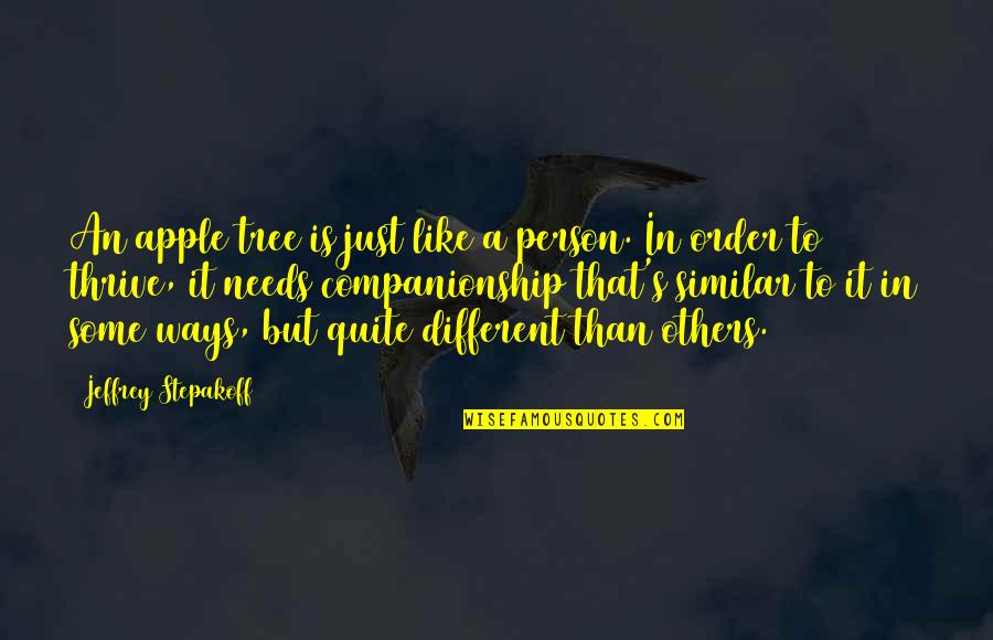 Jeffrey's Quotes By Jeffrey Stepakoff: An apple tree is just like a person.