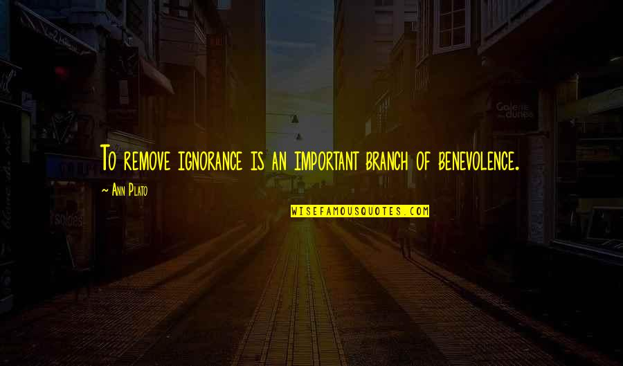 Jess And Cece Quotes By Ann Plato: To remove ignorance is an important branch of