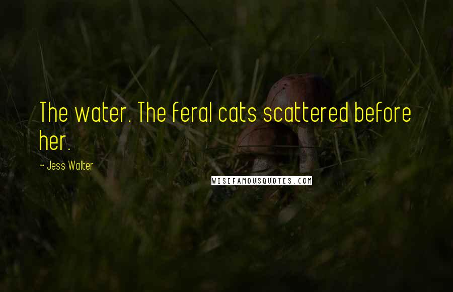 Jess Walter quotes: The water. The feral cats scattered before her.