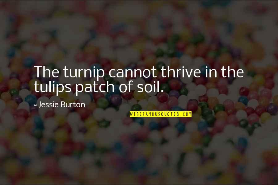 Jessie's Quotes By Jessie Burton: The turnip cannot thrive in the tulips patch