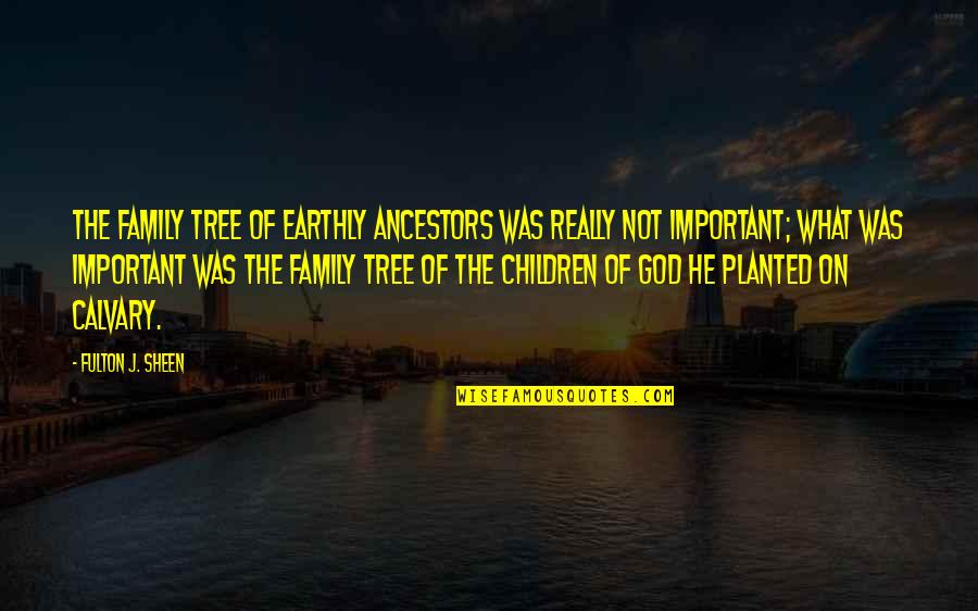 Jesus Cross Quotes By Fulton J. Sheen: The family tree of earthly ancestors was really