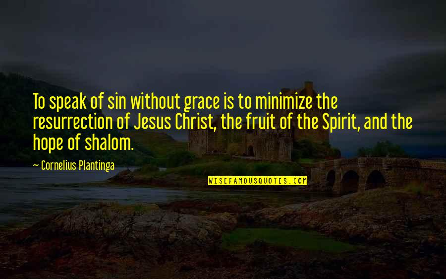 Jesus Grace Quotes By Cornelius Plantinga: To speak of sin without grace is to