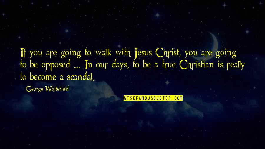 Jesus Persecution Quotes By George Whitefield: If you are going to walk with Jesus