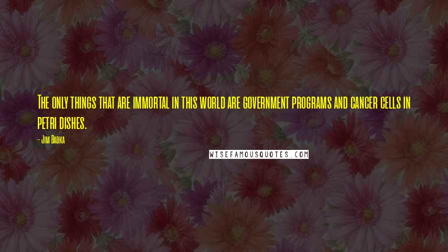 Jim Babka quotes: The only things that are immortal in this world are government programs and cancer cells in petri dishes.