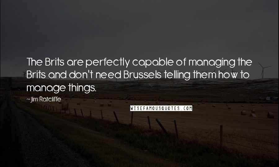 Jim Ratcliffe quotes: The Brits are perfectly capable of managing the Brits and don't need Brussels telling them how to manage things.