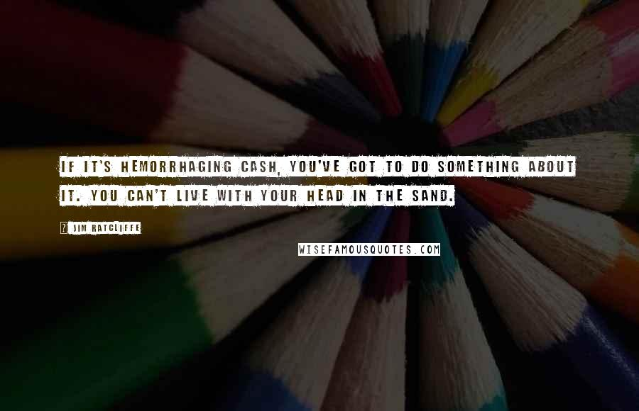 Jim Ratcliffe quotes: If it's hemorrhaging cash, you've got to do something about it. You can't live with your head in the sand.