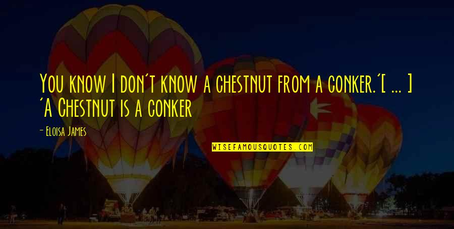 Jimmy Dykes Quotes By Eloisa James: You know I don't know a chestnut from
