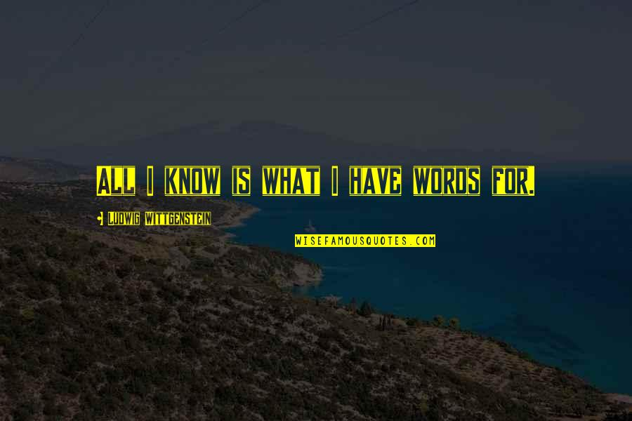 Jimmy Dykes Quotes By Ludwig Wittgenstein: All I know is what I have words