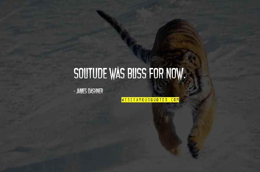 Jo Knowles Quotes By James Dashner: solitude was bliss for now.