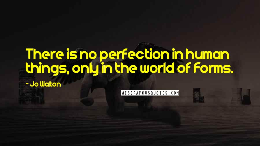 Jo Walton quotes: There is no perfection in human things, only in the world of Forms.
