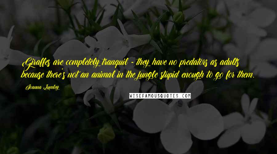 Joanna Lumley quotes: Giraffes are completely tranquil - they have no predators as adults because there's not an animal in the jungle stupid enough to go for them.