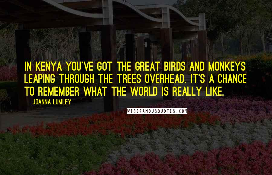 Joanna Lumley quotes: In Kenya you've got the great birds and monkeys leaping through the trees overhead. It's a chance to remember what the world is really like.