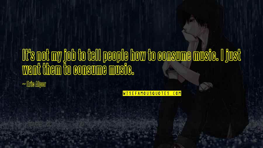 Job Quotes Quotes By Eric Alper: It's not my job to tell people how