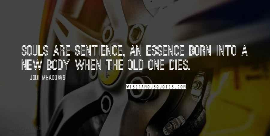Jodi Meadows quotes: Souls are sentience, an essence born into a new body when the old one dies.
