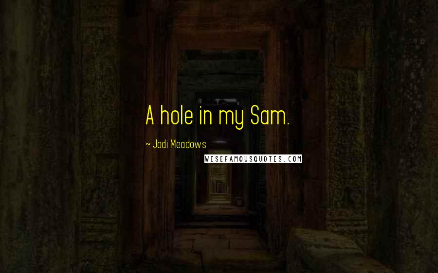 Jodi Meadows quotes: A hole in my Sam.