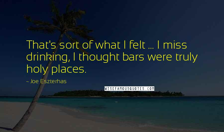 Joe Eszterhas quotes: That's sort of what I felt ... I miss drinking, I thought bars were truly holy places.