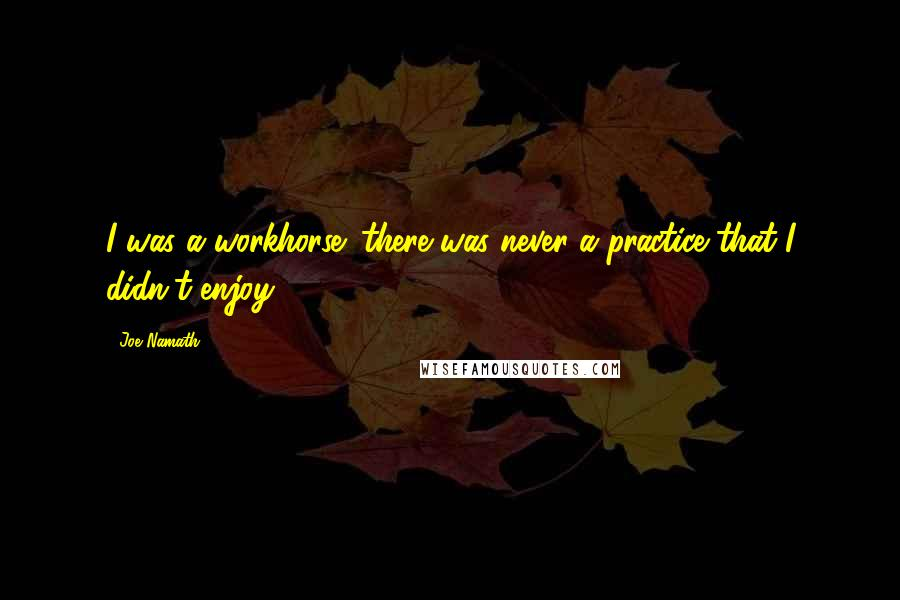 Joe Namath quotes: I was a workhorse; there was never a practice that I didn't enjoy.