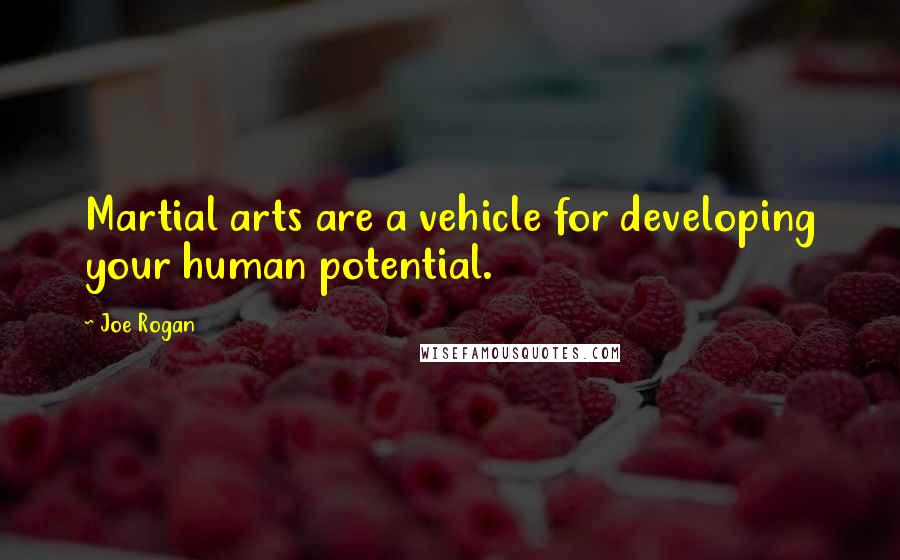 Joe Rogan quotes: Martial arts are a vehicle for developing your human potential.