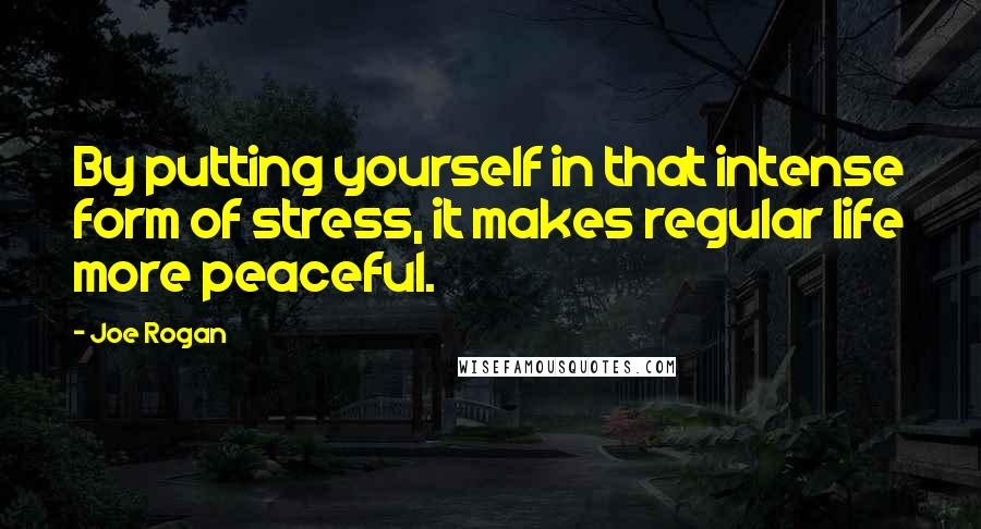 Joe Rogan quotes: By putting yourself in that intense form of stress, it makes regular life more peaceful.