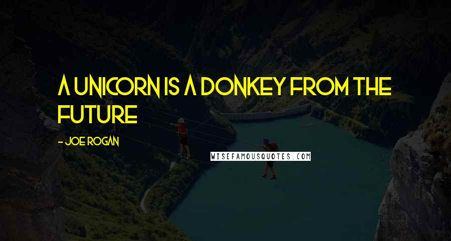 Joe Rogan quotes: A unicorn is a donkey from the future