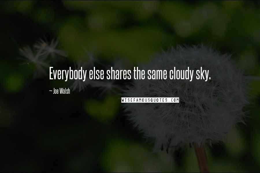 Joe Walsh quotes: Everybody else shares the same cloudy sky.