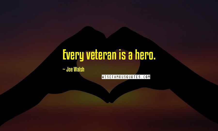 Joe Walsh quotes: Every veteran is a hero.