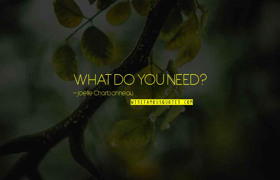 Joelle Charbonneau Quotes By Joelle Charbonneau: WHAT DO YOU NEED?