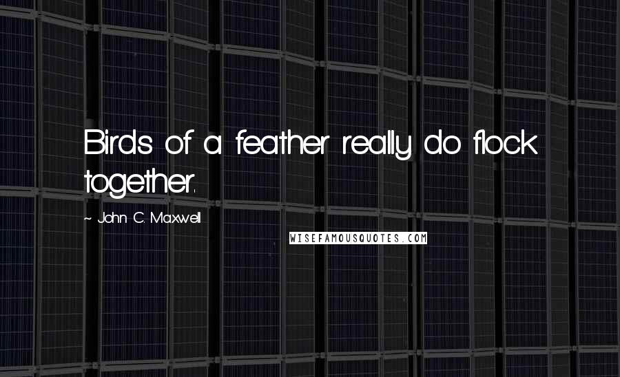 John C. Maxwell quotes: Birds of a feather really do flock together.