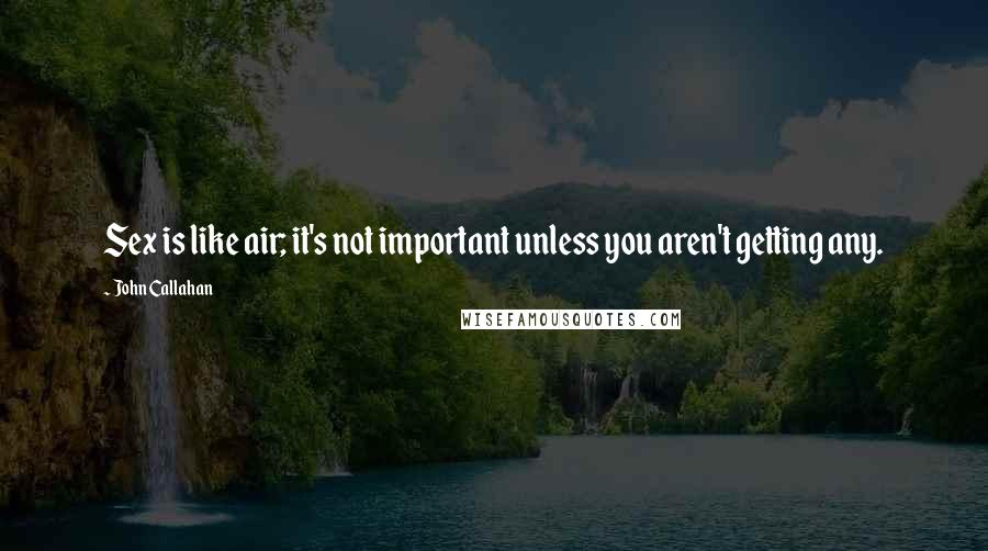 John Callahan quotes: Sex is like air; it's not important unless you aren't getting any.