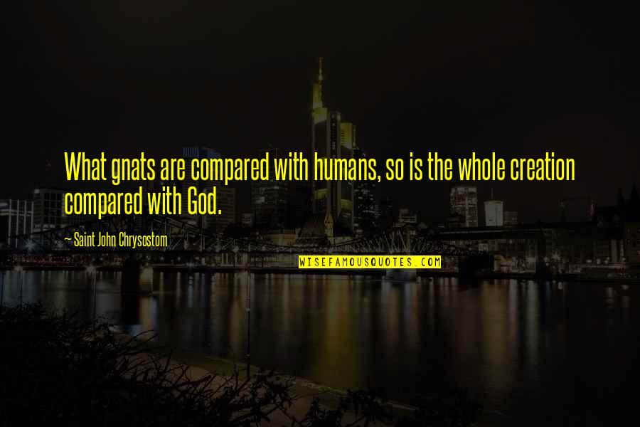 John Chrysostom Quotes By Saint John Chrysostom: What gnats are compared with humans, so is