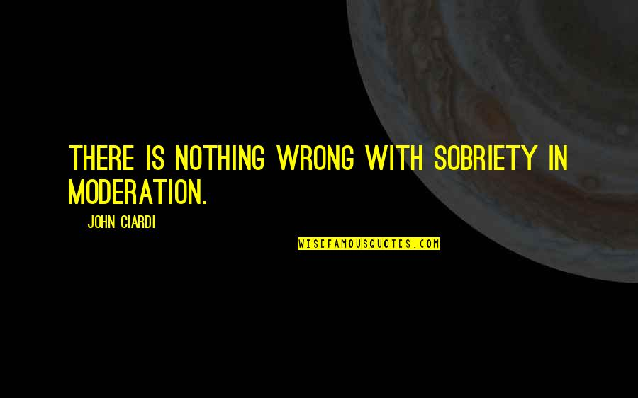 John Ciardi Quotes By John Ciardi: There is nothing wrong with sobriety in moderation.