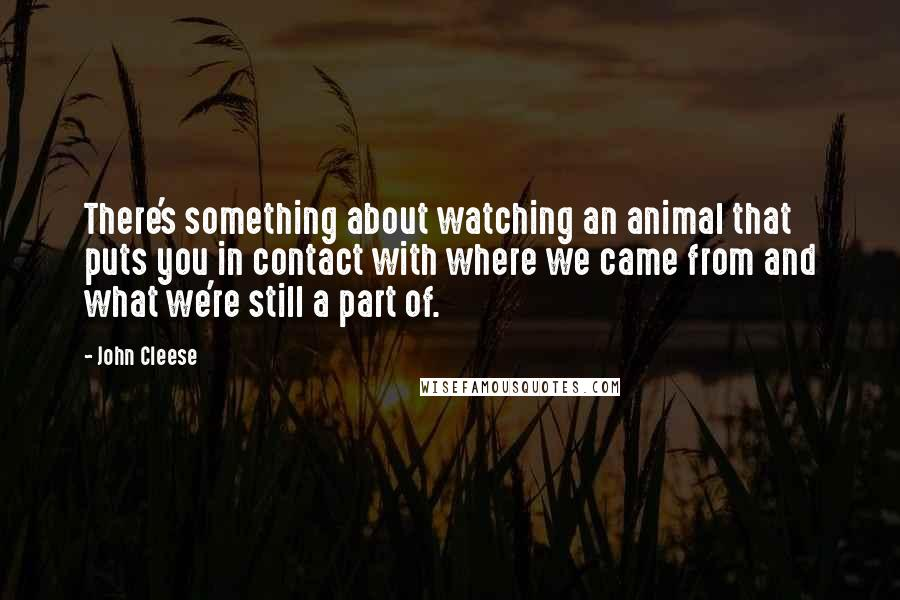 John Cleese quotes: There's something about watching an animal that puts you in contact with where we came from and what we're still a part of.
