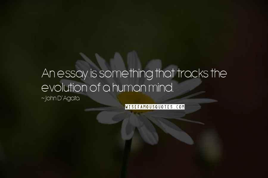 John D'Agata quotes: An essay is something that tracks the evolution of a human mind.