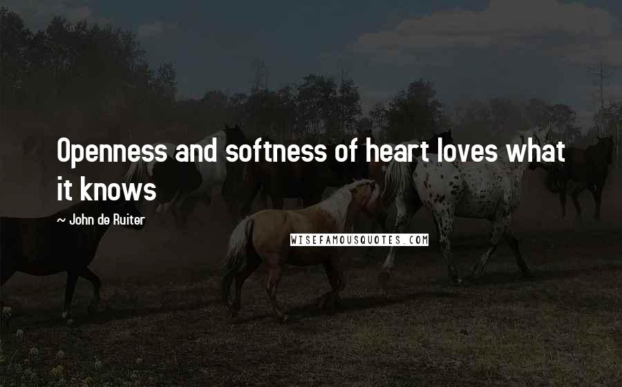 John De Ruiter quotes: Openness and softness of heart loves what it knows
