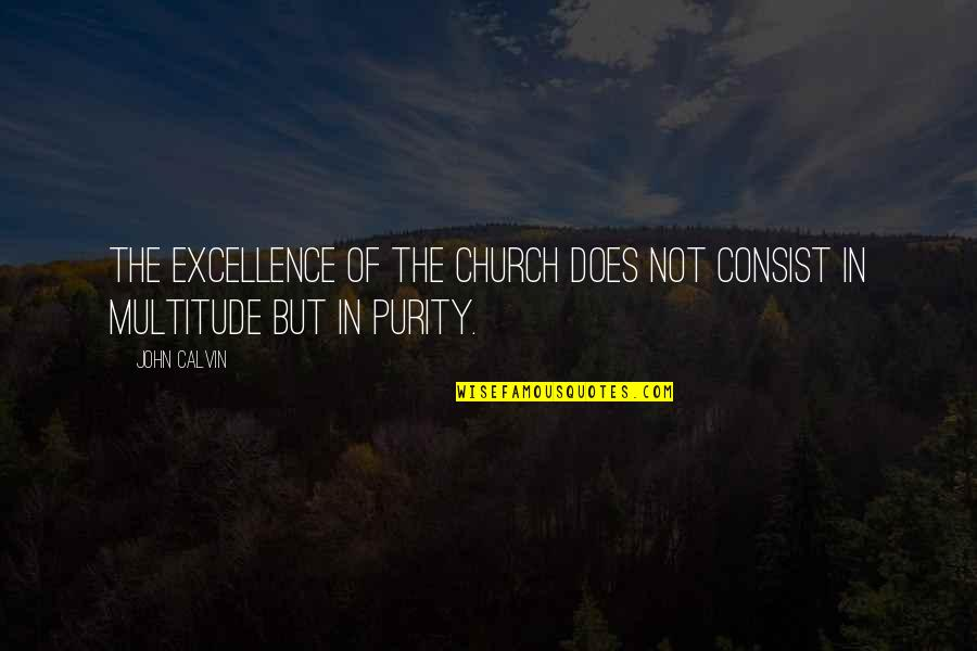 John Doe Quotes By John Calvin: The excellence of the Church does not consist