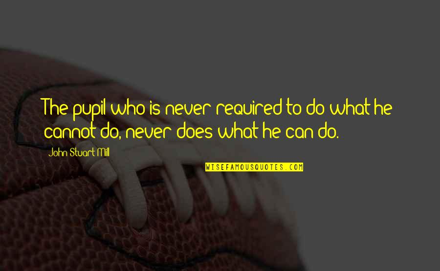 John Doe Quotes By John Stuart Mill: The pupil who is never required to do