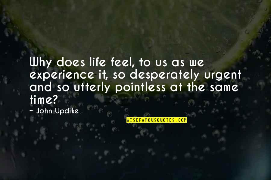 John Doe Quotes By John Updike: Why does life feel, to us as we