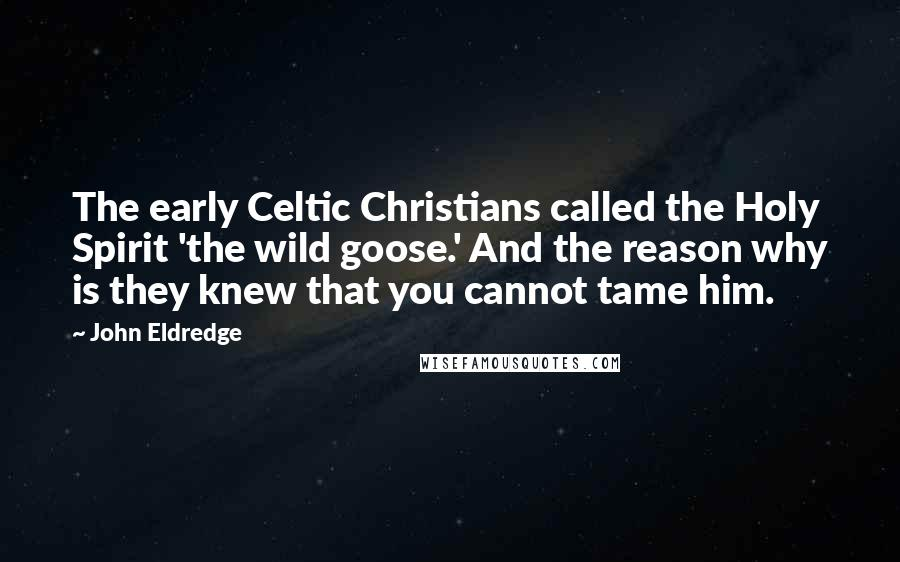 John Eldredge quotes: The early Celtic Christians called the Holy Spirit 'the wild goose.' And the reason why is they knew that you cannot tame him.
