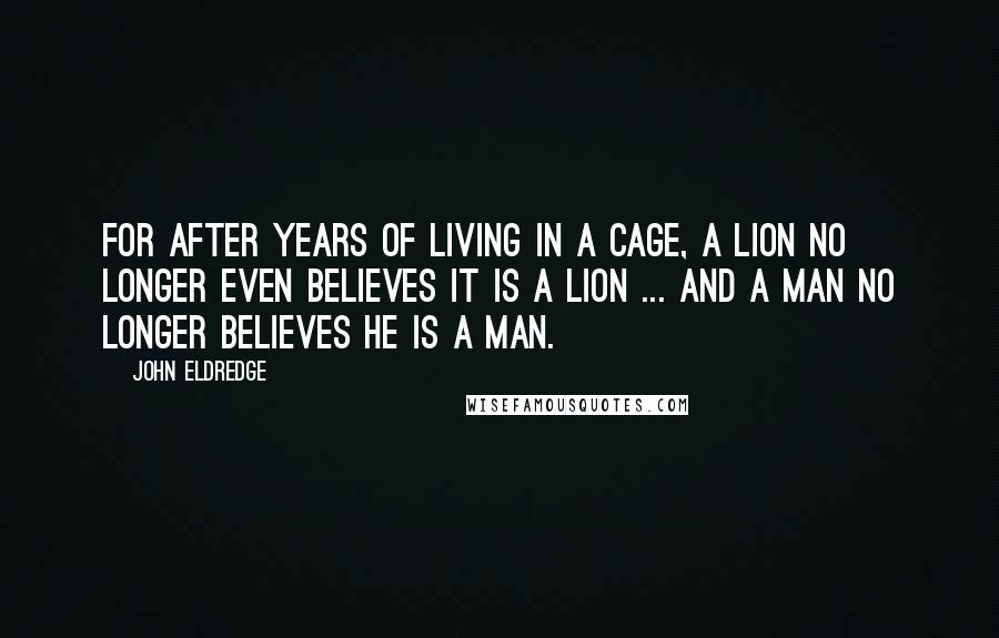 John Eldredge quotes: For after years of living in a cage, a lion no longer even believes it is a lion ... and a man no longer believes he is a man.