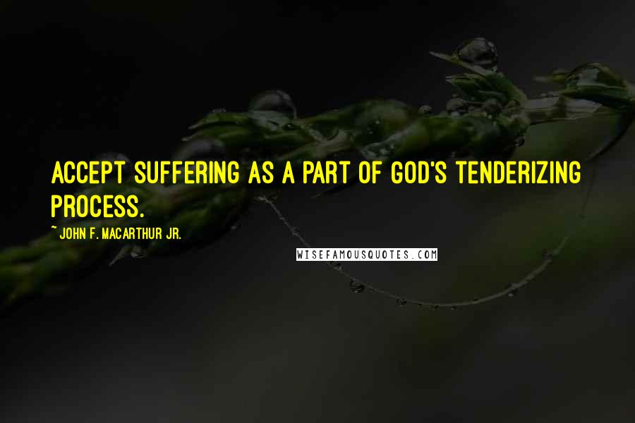 John F. MacArthur Jr. quotes: Accept suffering as a part of God's tenderizing process.