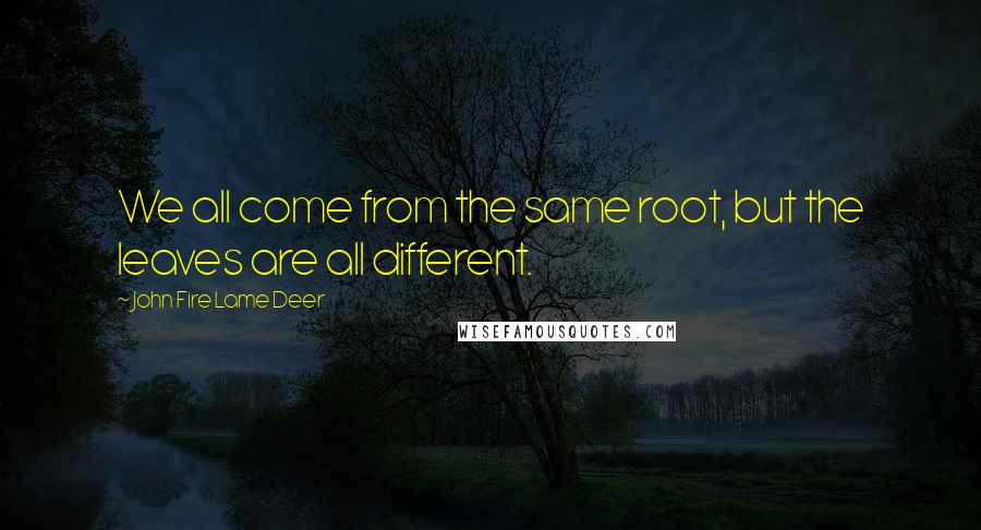 John Fire Lame Deer quotes: We all come from the same root, but the leaves are all different.