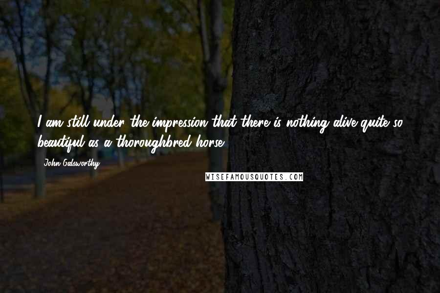 John Galsworthy quotes: I am still under the impression that there is nothing alive quite so beautiful as a thoroughbred horse.