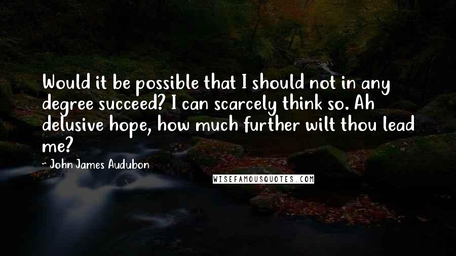 John James Audubon quotes: Would it be possible that I should not in any degree succeed? I can scarcely think so. Ah delusive hope, how much further wilt thou lead me?