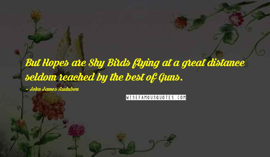 John James Audubon quotes: But Hopes are Shy Birds flying at a great distance seldom reached by the best of Guns.