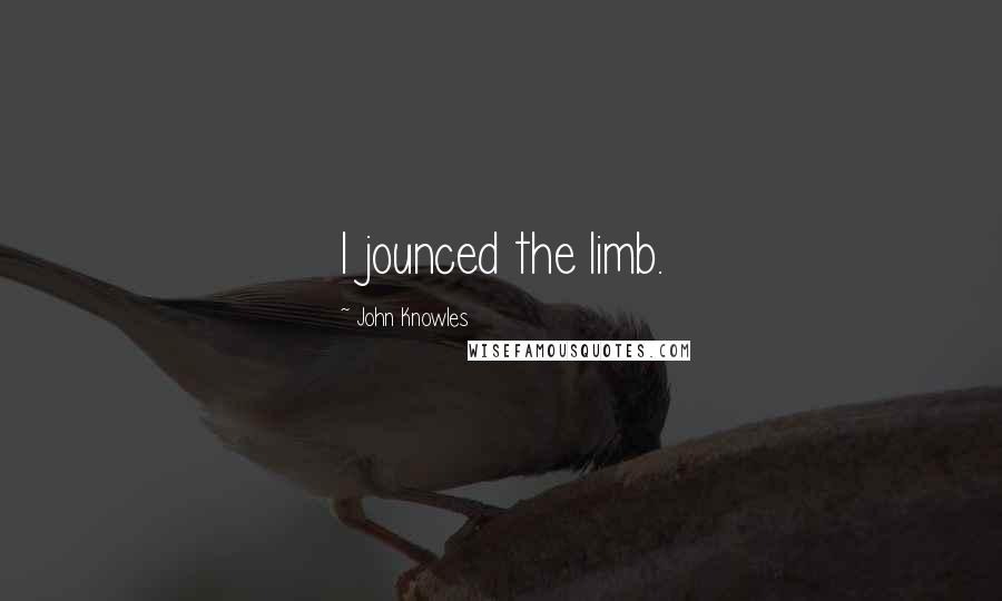 John Knowles quotes: I jounced the limb.