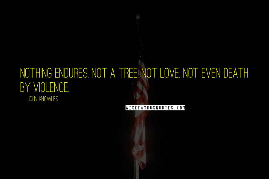 John Knowles quotes: Nothing endures. Not a tree. Not love. Not even death by violence.