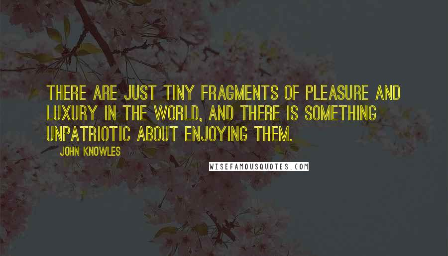 John Knowles quotes: There are just tiny fragments of pleasure and luxury in the world, and there is something unpatriotic about enjoying them.