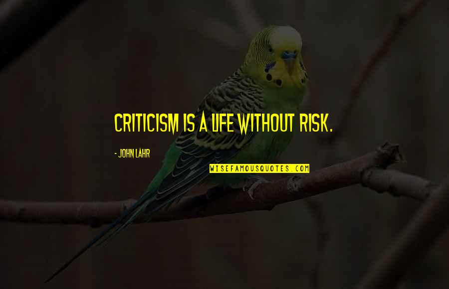 John Lahr Quotes By John Lahr: Criticism is a life without risk.