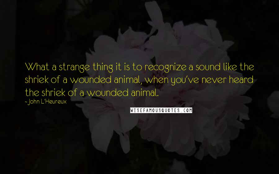 John L'Heureux quotes: What a strange thing it is to recognize a sound like the shriek of a wounded animal, when you've never heard the shriek of a wounded animal.